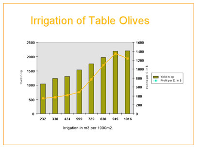 Olive watering diagramme